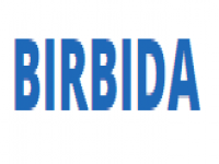 BIRBIDA CAR