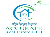Accurate Real Estate Limited