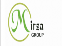 Mirza Engineering and Consultancy Limited