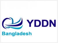 YDDN Global