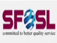 Smart Force Outsourcing System LTD.
